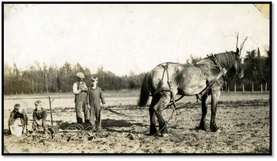 Bert Noreng and Sons plow the rich soils of Sand Island BHA 2012.301.35